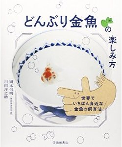 「どんぶり金魚の楽しみ方」本画像