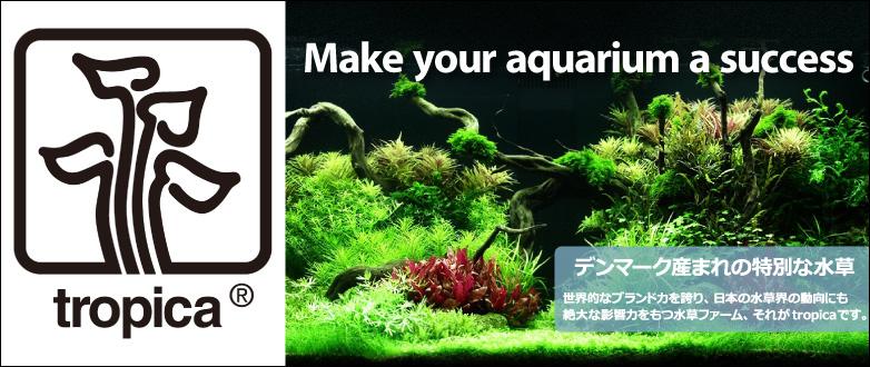 特選水草POT 鹿児島から、新鮮と安心をお届けいたします。国産水草POT